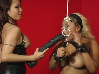 Bondage strumpets in heat with a huge vibrator