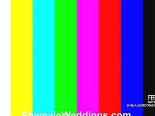 Thais stunning shemale bride