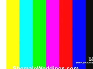 Lorena nasty shemale bride